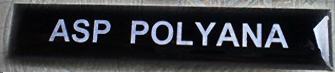 Plaqueta de Acrílico do Exército