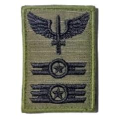 Distintivo Insígnia Aviador para o Camuflado