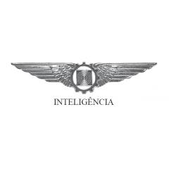 Brevê de Inteligência / Fotografia da Aeronáutica