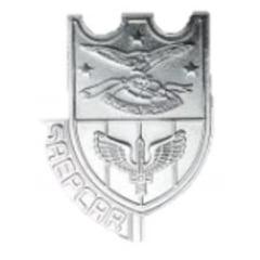 Distintivo de Diretor da SAEPCAR