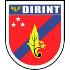 DOM - DIRINT